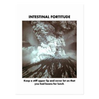 intestinal-fortitude-keep-a-stiff-upper-lip postcard