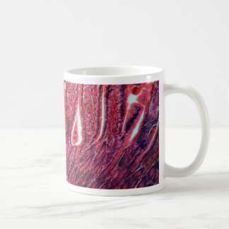 Intestine Cells under the Microscope Coffee Mug