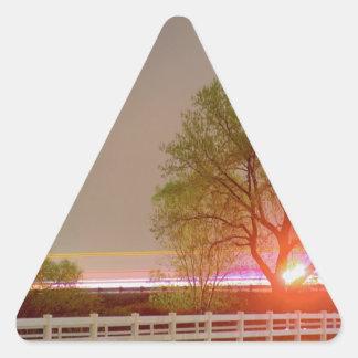 Into The Future Triangle Sticker