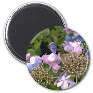 Into the garden magnet