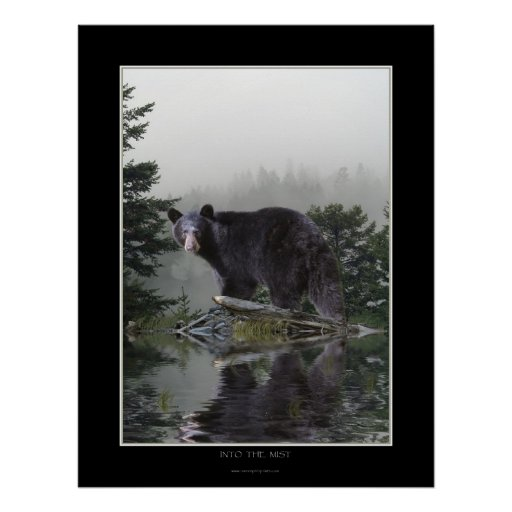 """""""INTO THE MIST"""" Black Bear Poster"""