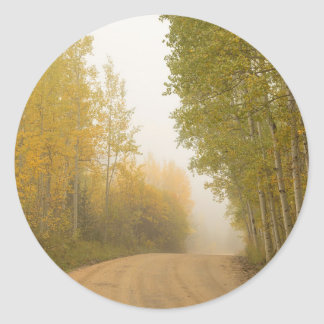 Into The Mist Classic Round Sticker