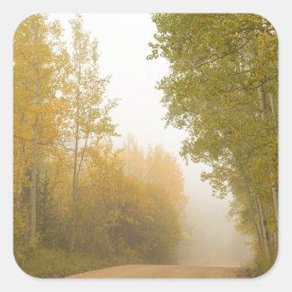 Into The Mist Square Sticker