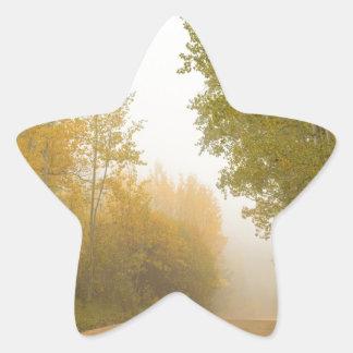 Into The Mist Star Sticker