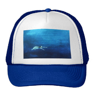 Into The Mystic Mesh Hats