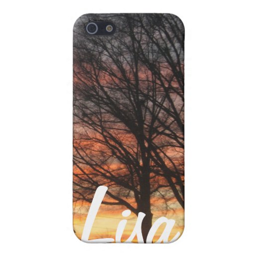 Into the sunset custom case! cover for iPhone 5