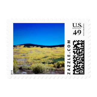 Into The Wild Blue Postage
