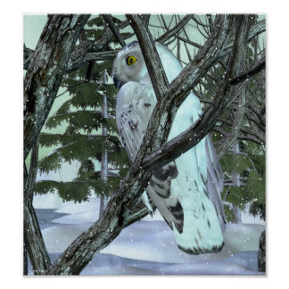 Into The Wild Snowy Owl Poster