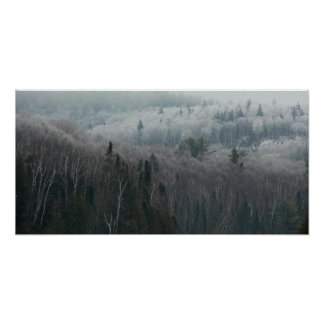 Into the Winter Forest Posters