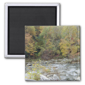 Into the Woods 2 Inch Square Magnet