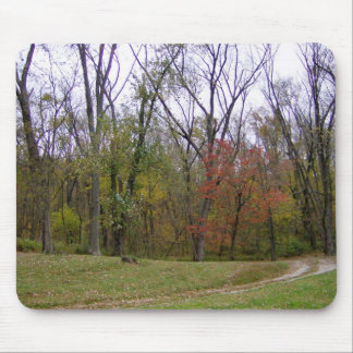 Into The Woods Mouse Pad