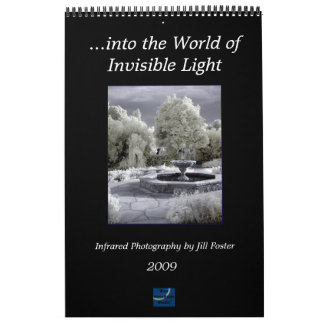 ...into the World of Invisible Light Calendar
