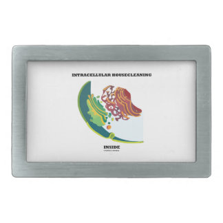 Intracellular Housecleaning Inside (Endomembrane) Belt Buckle
