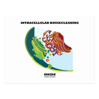 Intracellular Housecleaning Inside Endomembrane Postcard