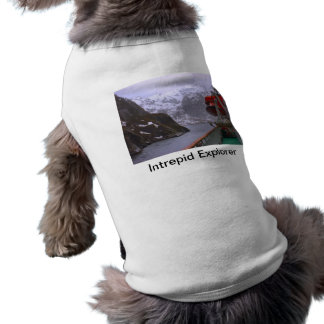 Intrepid explorer, Norwegian voyage Tee