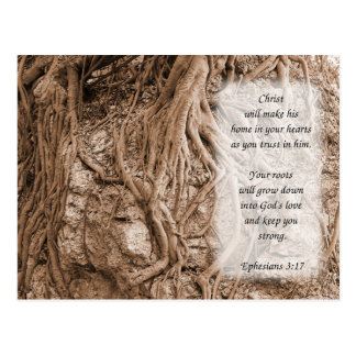 Intricate Aerial Root System of the Banyan Tree Postcard