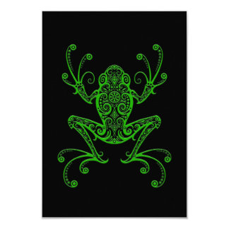 Intricate Green Tree Frog on Black Card