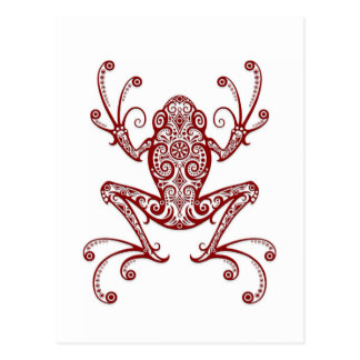 Intricate Red Tree Frog on White Postcard