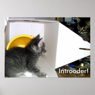 Introoder! Kitten poster