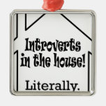 Introverts in the house! christmas tree ornament