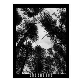 Intuition Poster