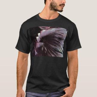 Inusual violeta del negro solar de las plumas del playera