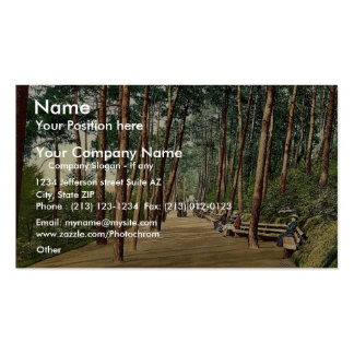 Invalids' walk, Bournemouth, England vintage Photo Double-Sided Standard Business Cards (Pack Of 100)