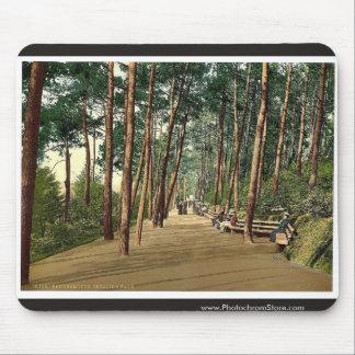 Invalids' walk, Bournemouth, England vintage Photo Mousepads