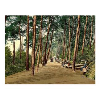 Invalids walk Bournemouth England vintage Photo Post Card