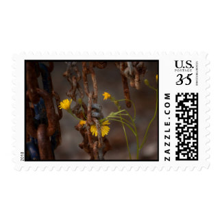 Invasive Flower Postage
