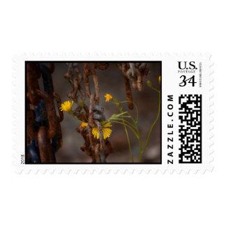 Invasive Flower Stamp