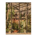 Invernadero con el cactus grande papel de corcho
