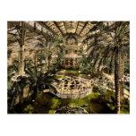 Invernadero (interior), Niza, Riviera pH clásico Postales