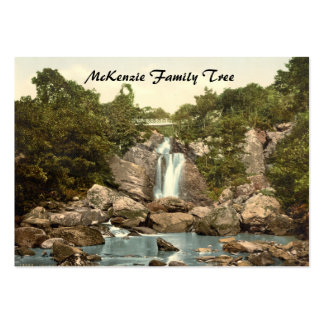 Inversnaid Falls, Loch Lomond, Scotland Large Business Cards (Pack Of 100)