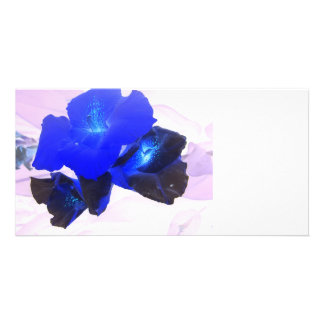 invert blue flowers against pink photo card