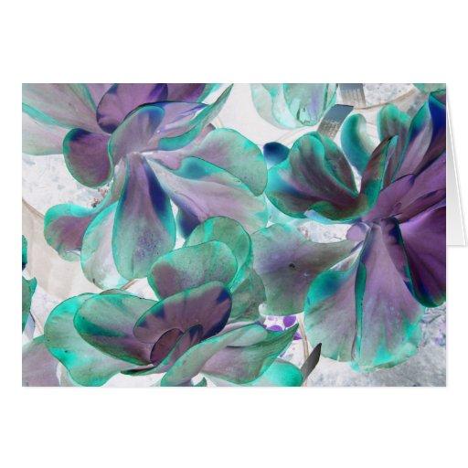 invert teal blue succulent flapjack plant card