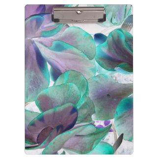invert teal blue succulent flapjack plant clipboard