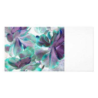 invert teal blue succulent flapjack plant photo cards