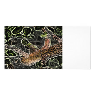invert tree frog in tree painting cute animal photo card