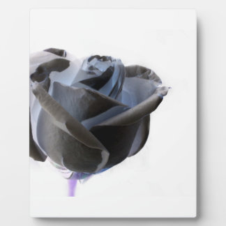 Inverted Black and White Rose Photo Plaque