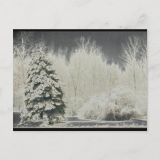 Inverted Tress postcard