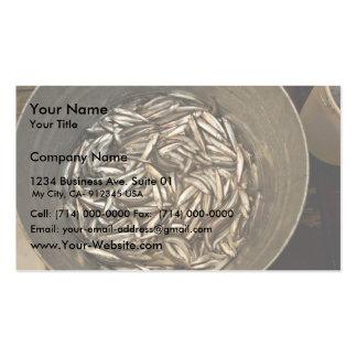 Investigación de los pescados del forraje, islas d tarjetas de negocios