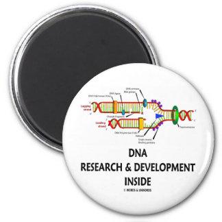 Investigación y desarrollo de la DNA dentro Iman