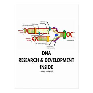 Investigación y desarrollo de la DNA dentro Postal