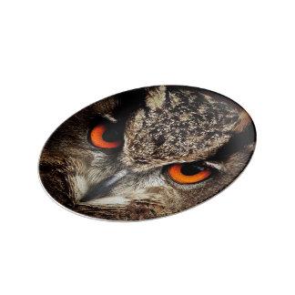 investigadores que miran el búho plato de cerámica
