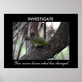 Investigate Poster