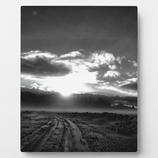invierno blanco y negro placa de madera