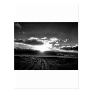 invierno blanco y negro tarjetas postales