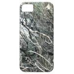 Invierno Bush iPhone 5 Case-Mate Protectores