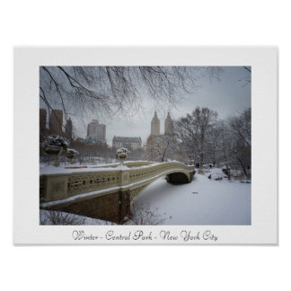 Invierno - Central Park - New York City Posters